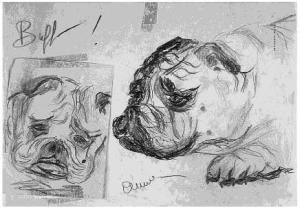 Aquí Anna Magnani inmortalizó a Buffo, el Bulldog de Tennessee. (Fuente: Tennesse Williams Notebooks)